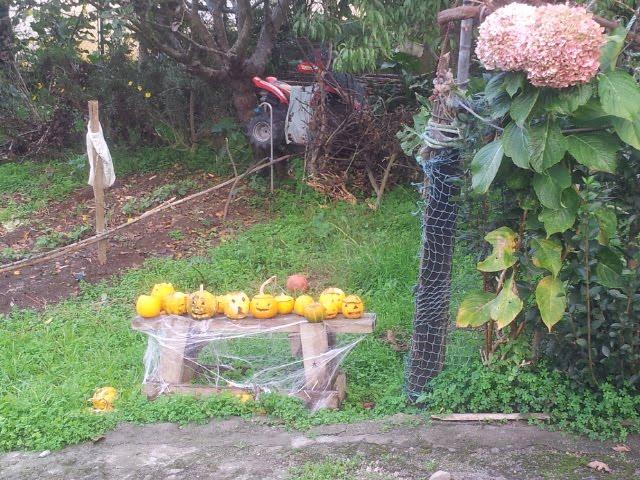 Samaín na aldea