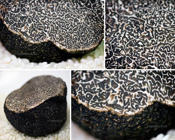 Christophe girardot saveurs couleurs les truffes noires arrivent - Comment cuisiner les truffes noires ...