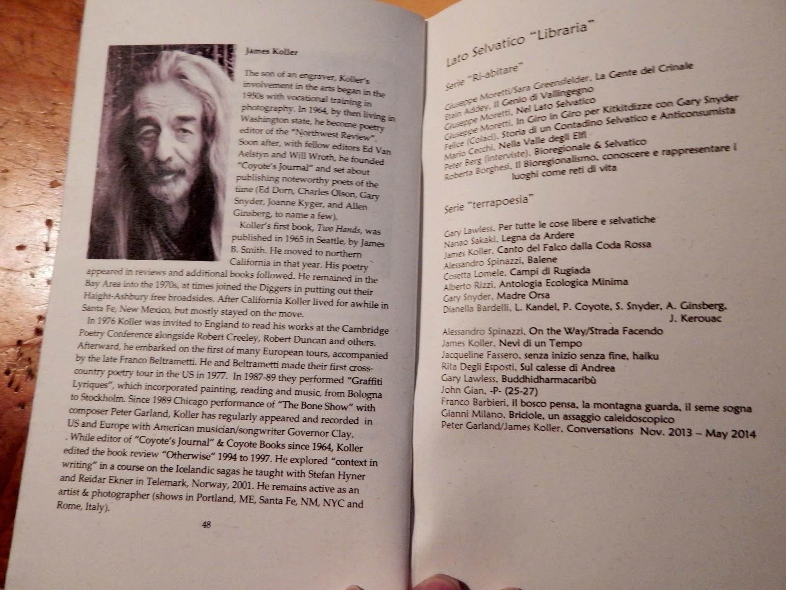 The novels of the Renaissance Boris Tenenbaum: a selection of sites