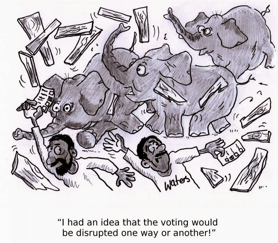 A Comic Ordeal:  Elephants Disrupt Voting