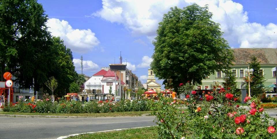 Zona orasului Sannicolau Mare