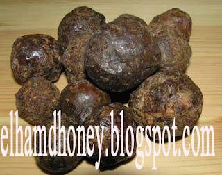 عكبر  النحل.elhamdhoney.blogspot.com