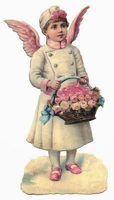 angelo dalle ali rosa