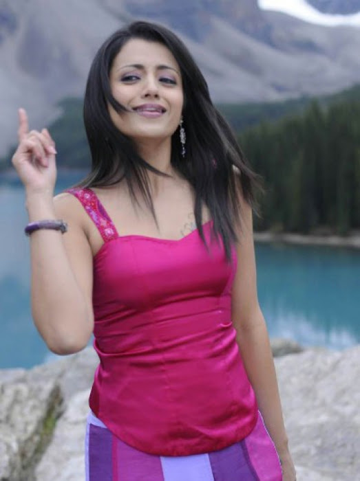 trisha in guard movie pink dress shoot song , hot images