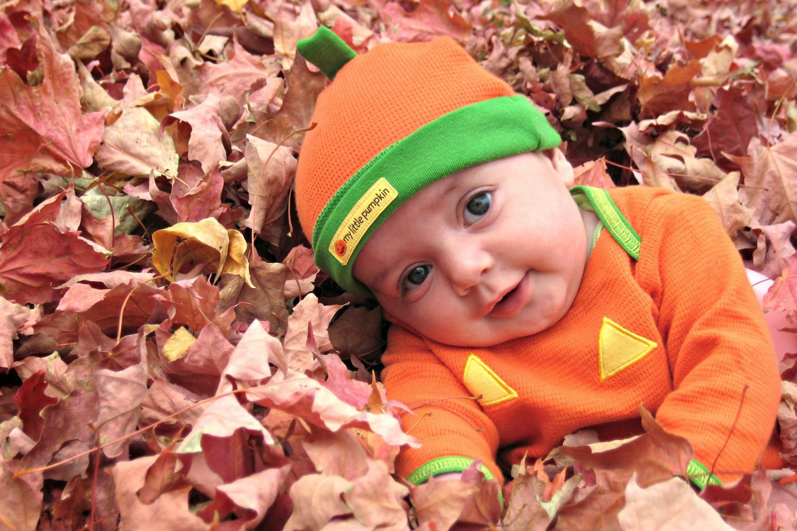 adopting a baby from foster care