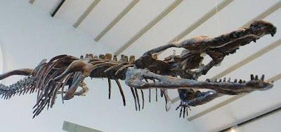 Fosil Buaya Prasejarah Seukuran Bus Digali di Tunisia