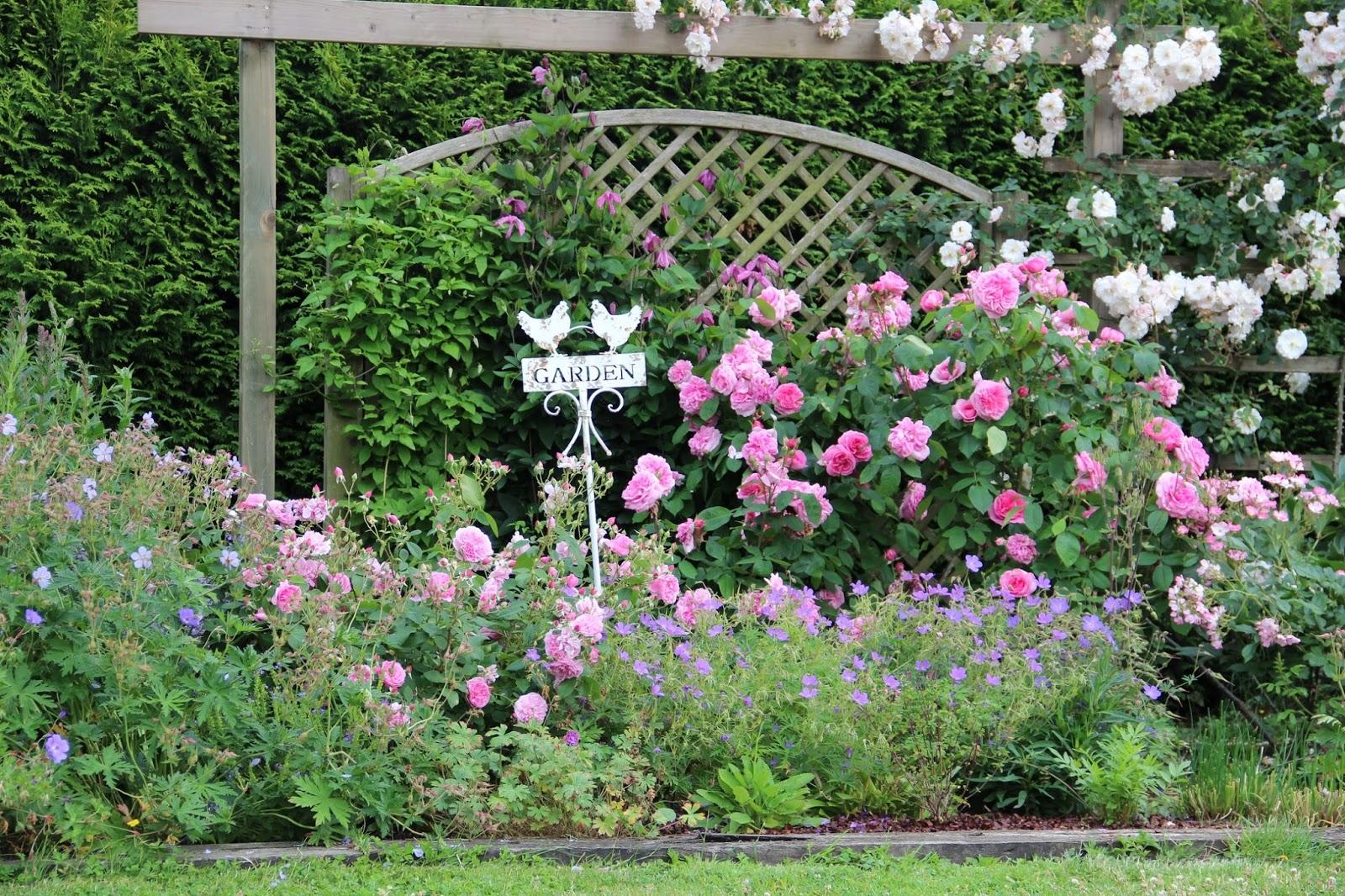Derri re les murs de mon jardin p riple en belgique jour 1 le jardin de b - Derriere les murs de mon jardin ...