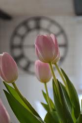 Vårtecken