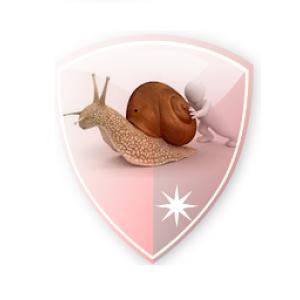 SlowDns logo