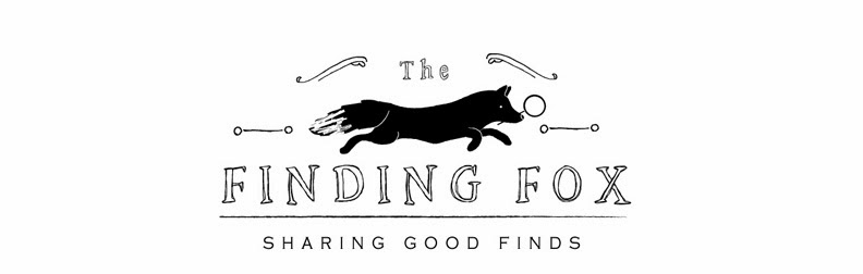 The Finding Fox