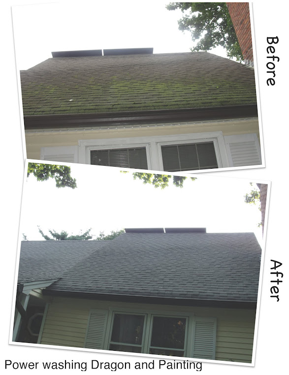 Roof cleaning, Dragon's shampoo, before and after.