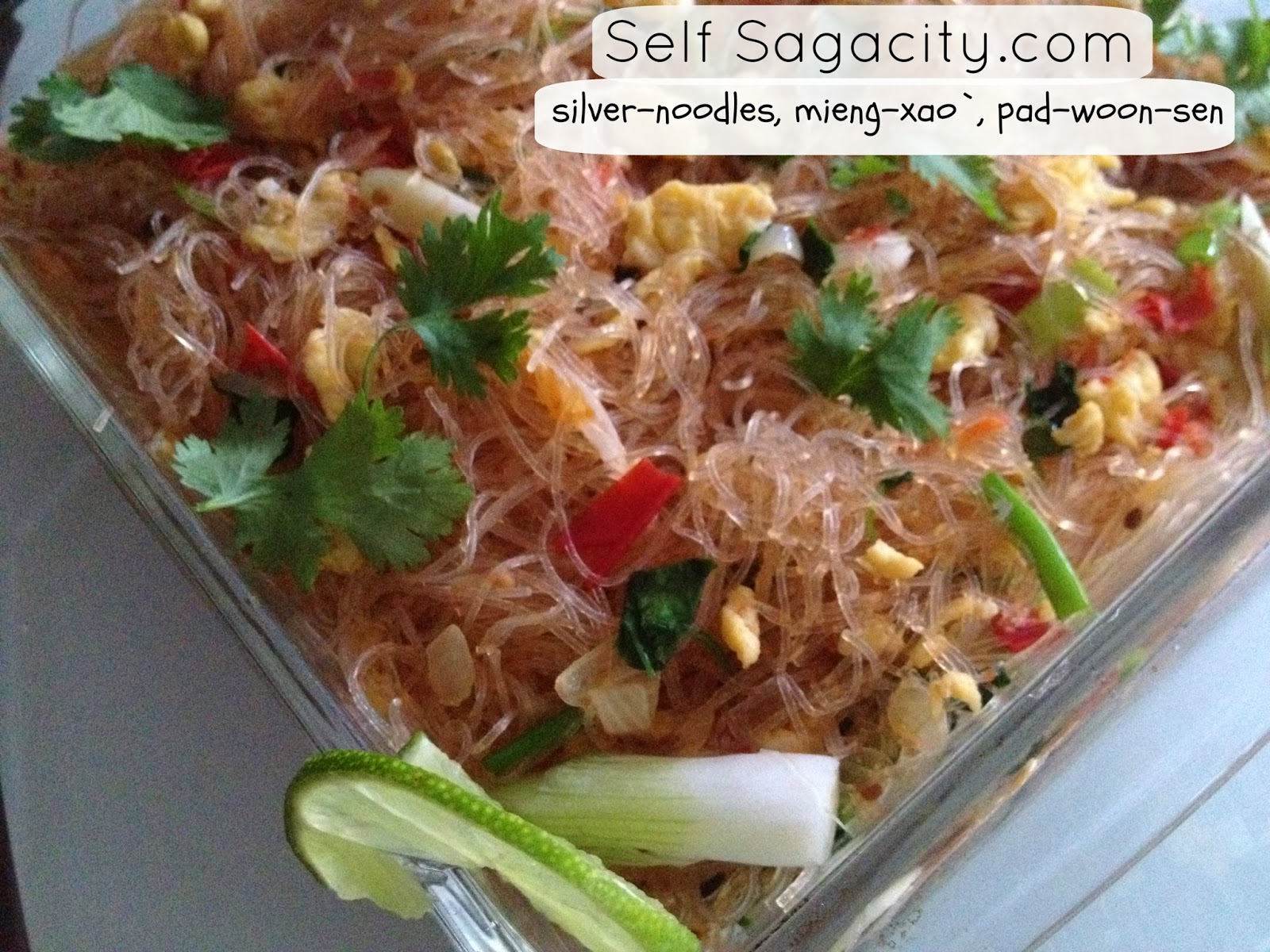 PadWoonSen MienXao Silver Noodles Vegetarain Recipe