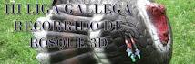 III LIGA GALLEGA DE R.B.3D- 2012