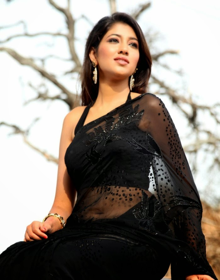 Actress hot in sari