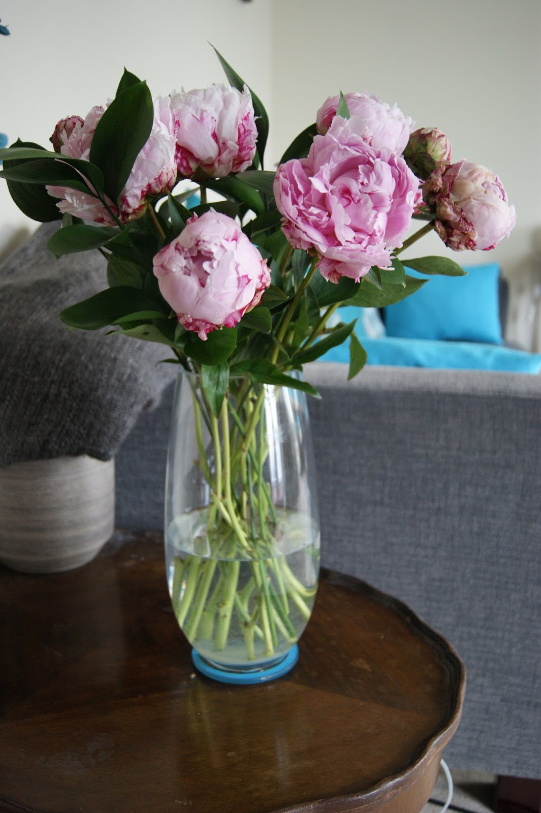 Pretty peonies from debenhams flowers frills n spills this lovely vase instore for a mere 8 this one on the john lewis website is near identical although i dont know why it is more than twice the price reviewsmspy