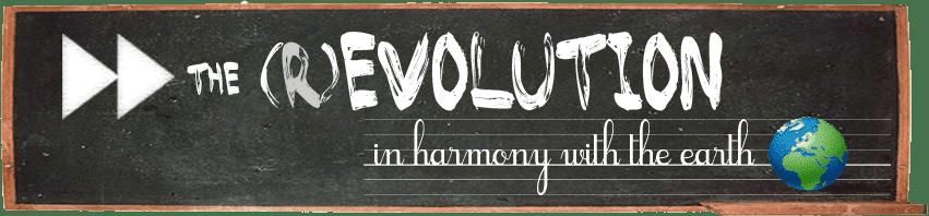 Accélère la (r)évolution