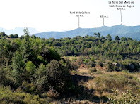 La Torre del Moro de Castellnou de Bages vista des del camí ramader