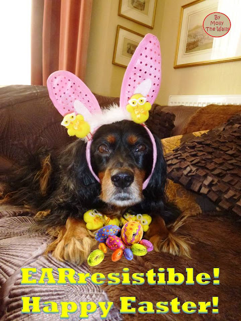 Molly The Wally Says Happy Easter!