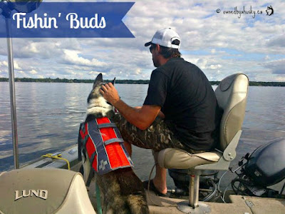 My Siberian Husky Fishing Partner #DogsInBoats