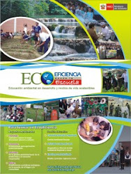 """Ecoeficiencia desde la Escuela"""