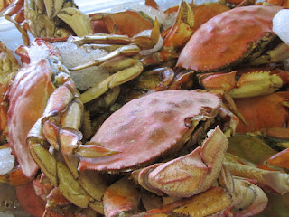 Mendocino County Crab, Wine & Beer Festival – 01/18/13 – 01/27/13