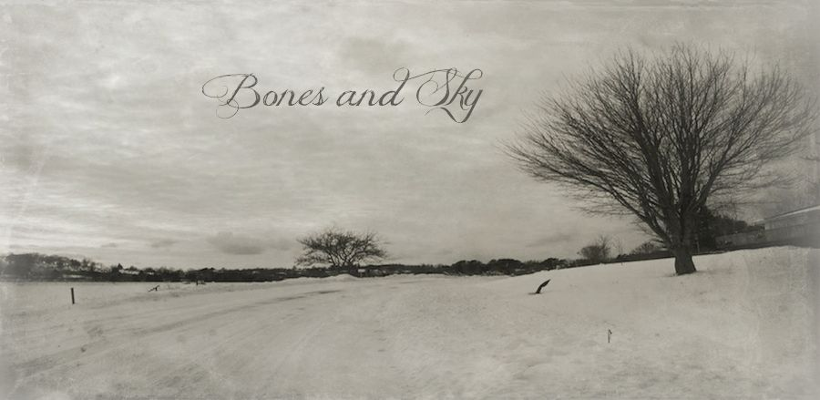Bones and Sky