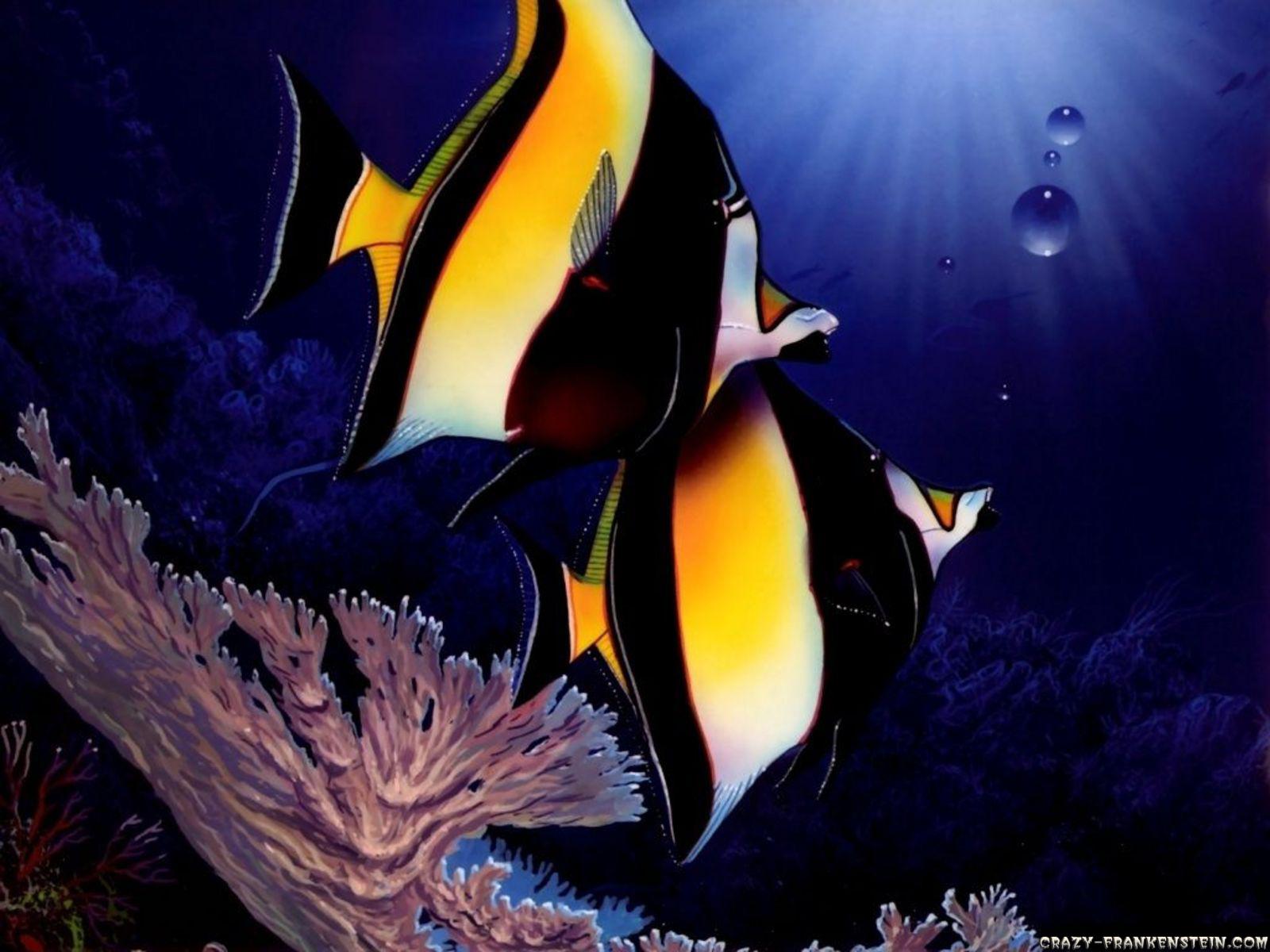 All New Wallpaper Beautiful Fish Wallpaper
