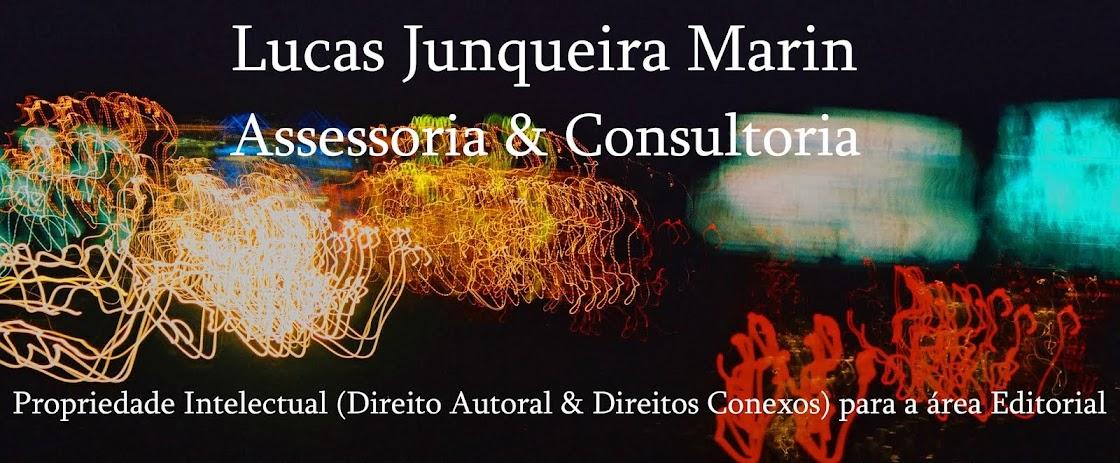 Lucas Junqueira Marin Assessoria & Consultoria