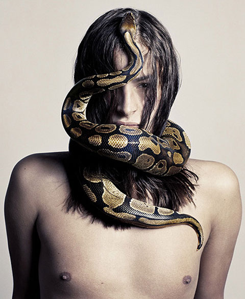 Amazing and Beautiful modals with Snakes