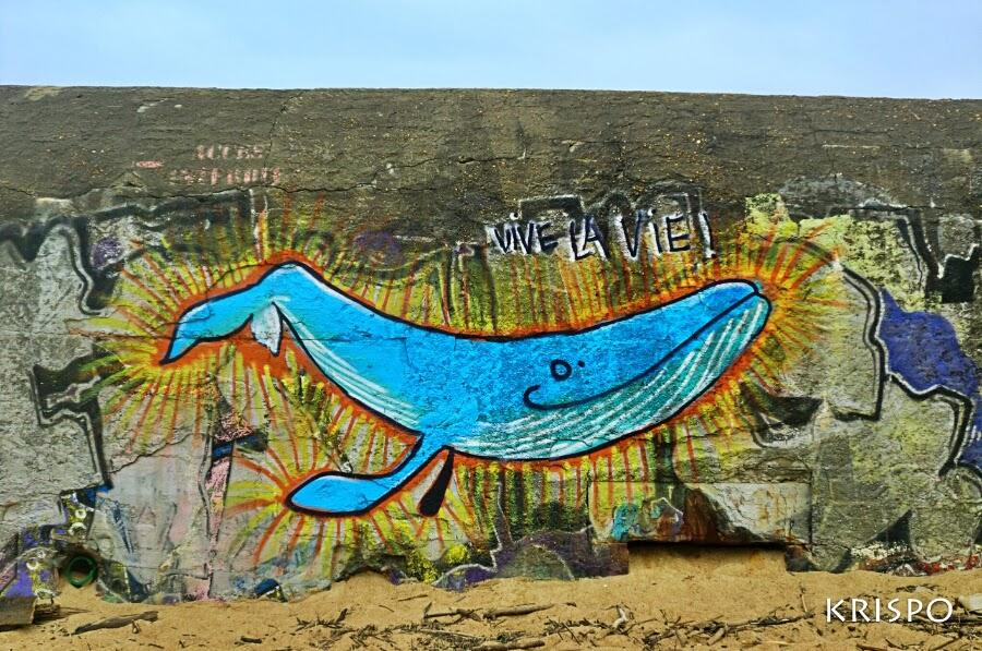 ballena pintada en bunker