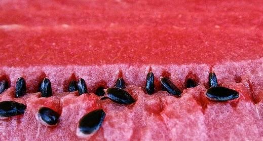 فوائد بذور البطيخ الأحمر