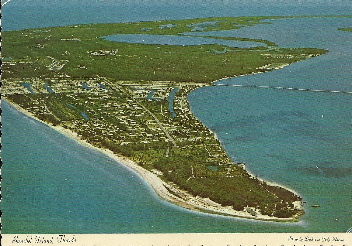 Florida Island Known For Seashells