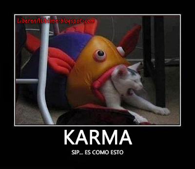 Karma with cats explicado con gatos