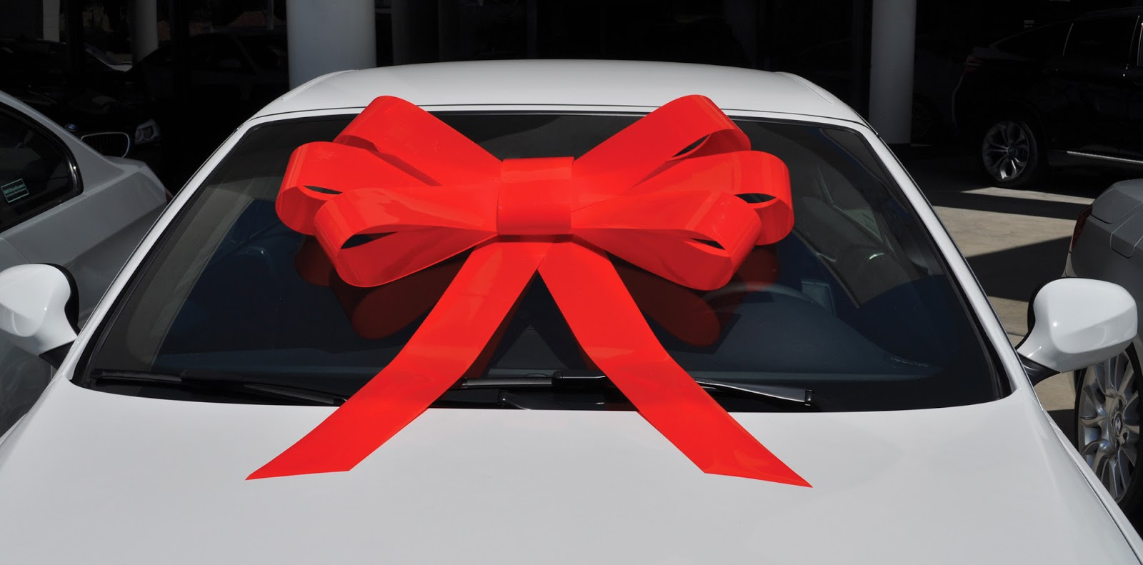 E Z Lettering Service Holiday Car Bows Windshield Bows Car Top
