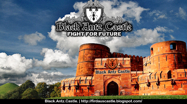 Black Antz Castle