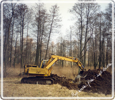 budowa stawu naturalnego