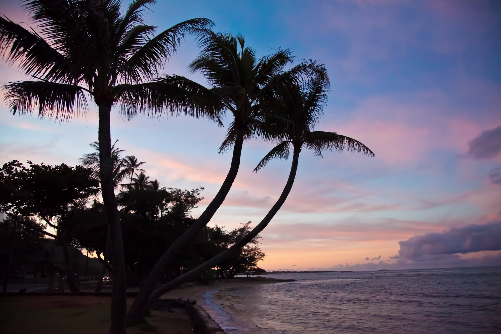 Car Rental Hilo Hawaii Cruise Port