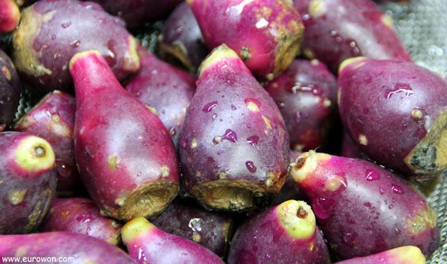 Frutos del cactus de los cien años
