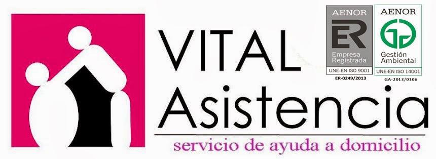 Vital Asistencia Ayuda A Domicilio S.L.L