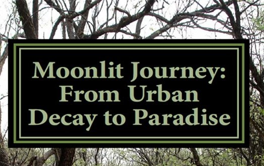 Moonlit Journey - Free Online PDF Book of Poetry