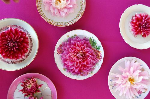 Dahlias+in+vintage+dishes+from+Chelsea+Fuss Flower Display Bouquets and Wedding Favours | Floral and Prop Stylist Chelsea Fuss | Happy Mothers Day