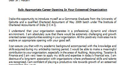 Chartered accountant fresher resume samples
