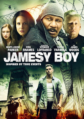 Poster Of Hollywood Film Jamesy Boy (2014) In 300MB Compressed Size PC Movie Free Download At worldfree4u.com