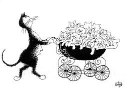 luttons contre la surpopulation féline en faisant stériliser nos chats