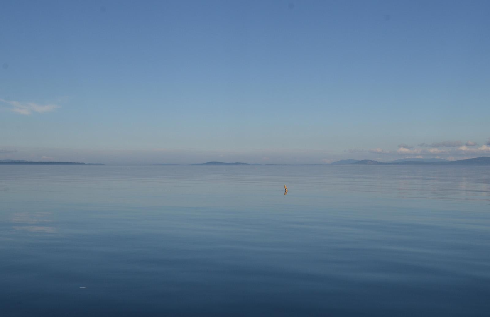 haro+buoy.jpg