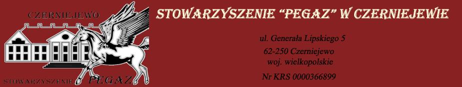 Stowarzyszenie PEGAZ w Czerniejewie