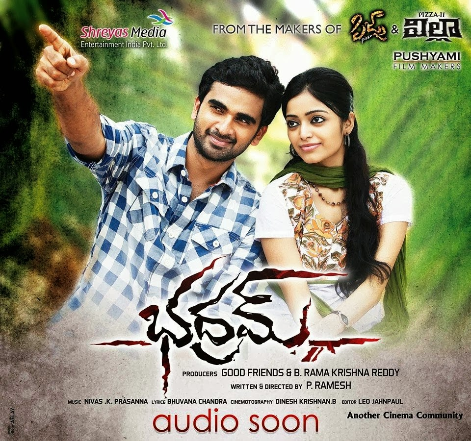 Bhadram 2014 Telugu Movie Watch Online