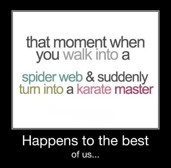 That Moment When you Walk Into A Spider Web & Suddenly Turn Into Karate Master