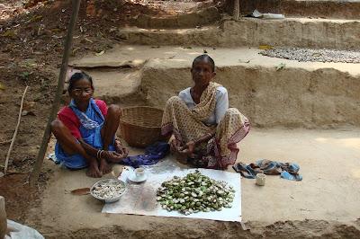 Harnai Women shelling cashews