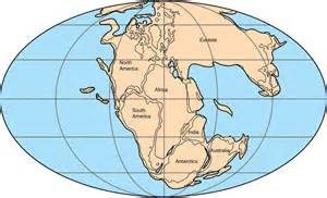 The Odd Seven Continents Theory